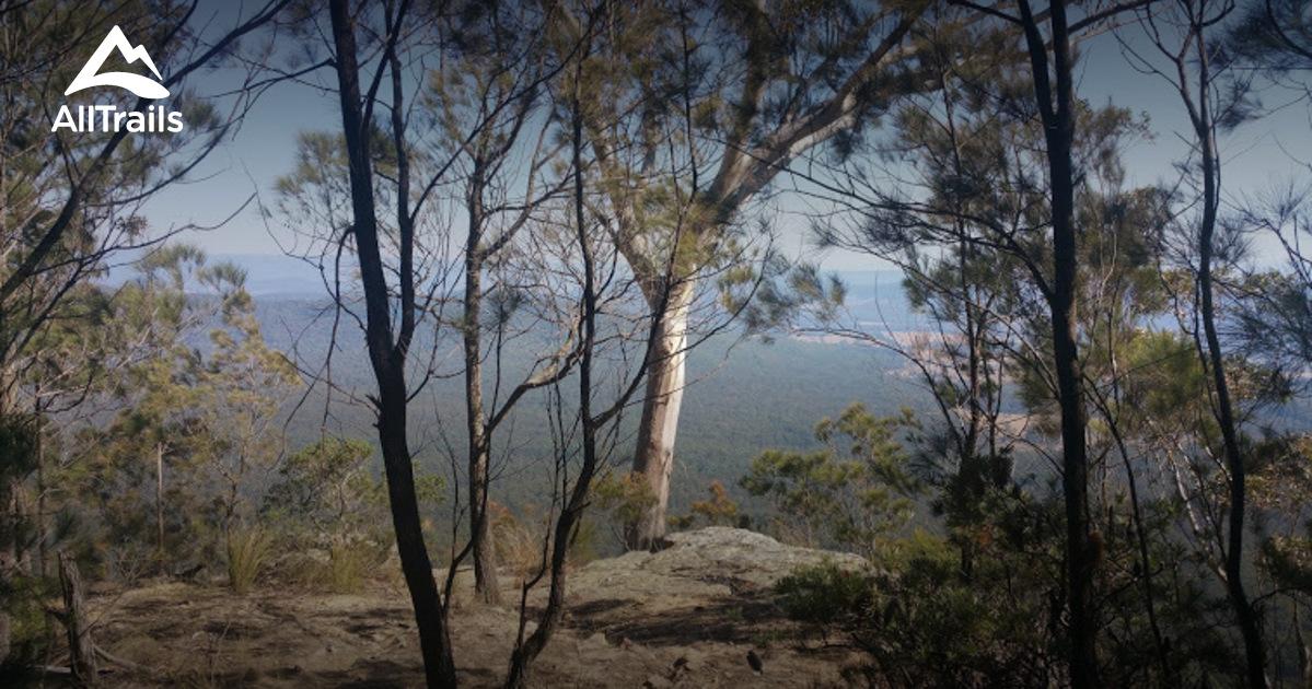 Bago Bluff National Park | Wiki | Everipedia