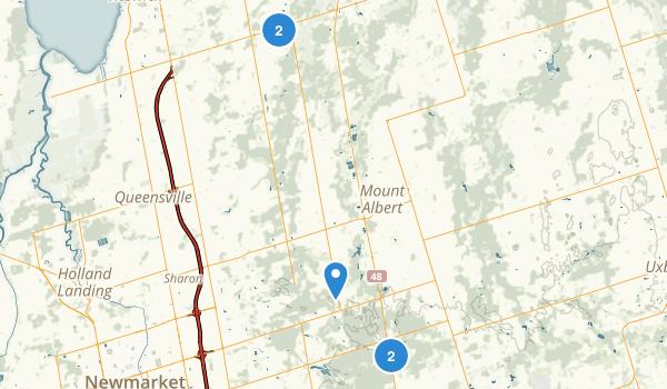 York Regional Forest Map
