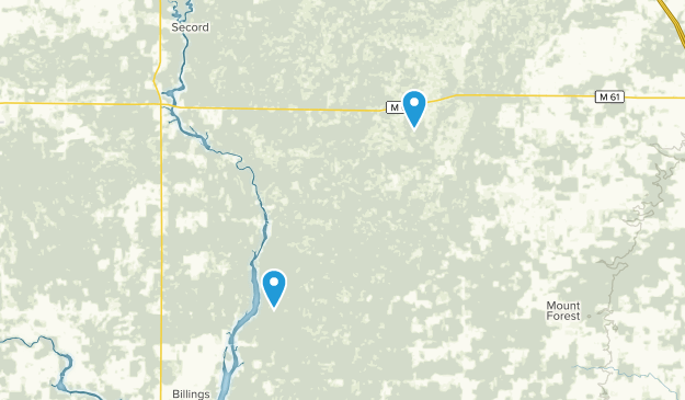 Tittabawassee River State Forest Map