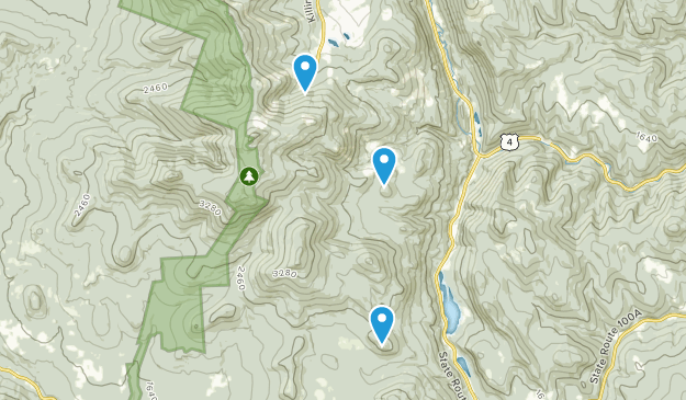 Calvin Coolidge State Forest Map