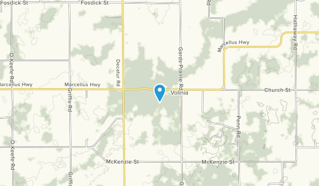 Best Trails in Fred Russ State Forest - Michigan | AllTrails