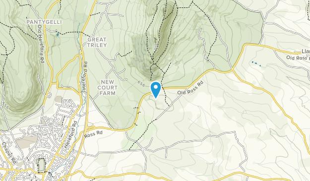 Pant-Skirrid Wood Map