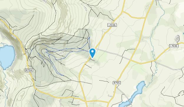 Ballinastoe Wood Map