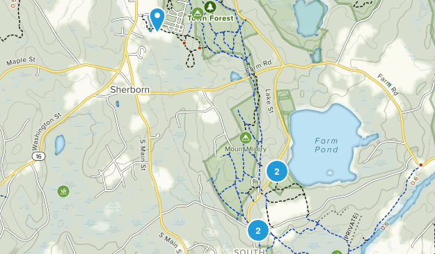 Sherborn Town Forest Map