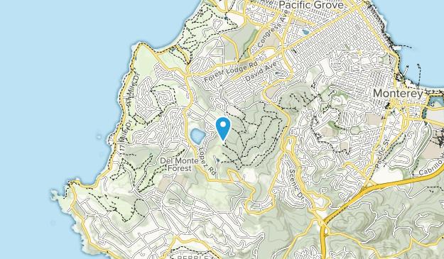 SFB Morse Botanical Reserve Map