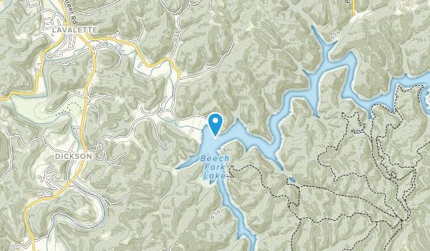 Beech Fork Marina Map