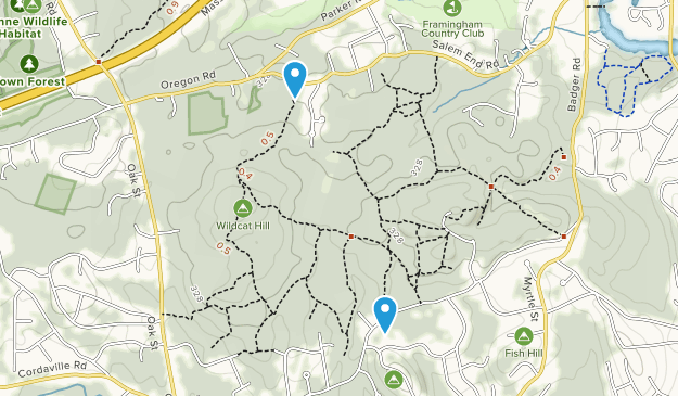 Ashland Town Forest Map