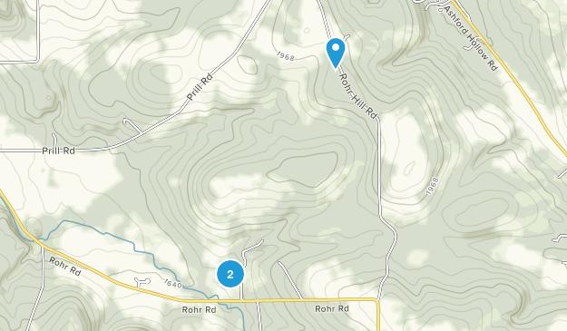 Griffis Sculpture Park Map