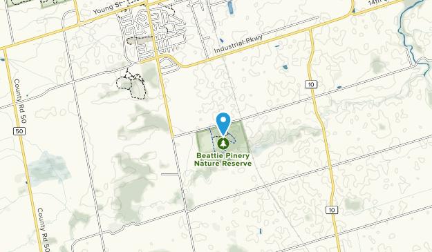 Beattie Pinery Provincial Park Map