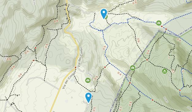Cansiglio Regional Forest Map