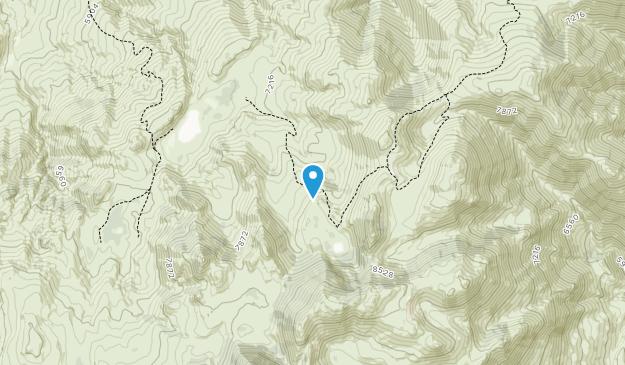 Pine Forest Range Wilderness Area Map