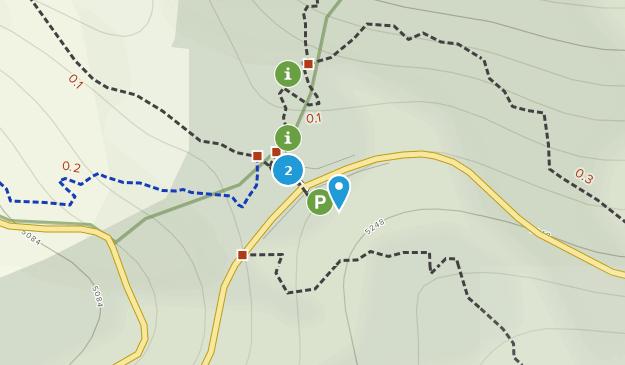 Monumento Natural del Roque Nublo Map