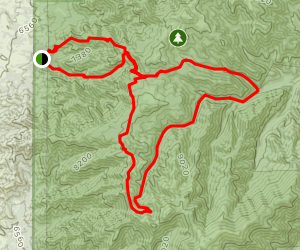 Big Bonito Loop Trail Map