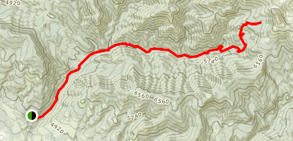 East Fork Canyon Creek Trail Map