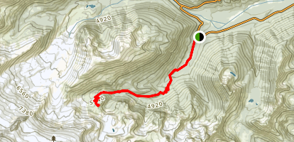 Summer Land Trail Map