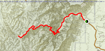 McKittrick Canyon Trail Map