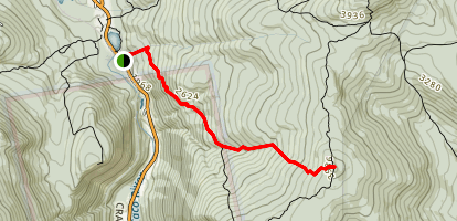 Mount Jackson Trail Map