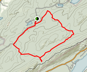 Woods Road Ski Loop Map