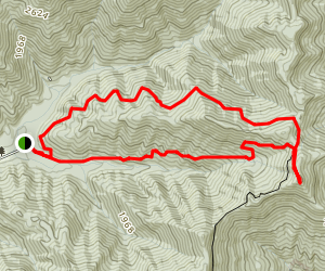 North Old Mac Mountain Trail Map