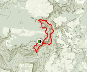 Yellow Bluff/Polly Branch Loop Map