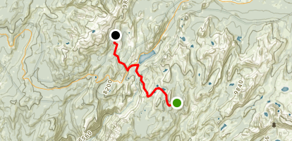 Sunrise Camp to May Lake Trail Map