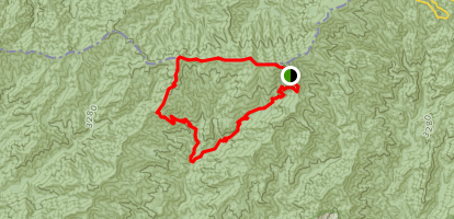 Silers Bald and Forney Creek Loop Trail Map