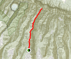 Wiliwilinui Ridge Trail Map