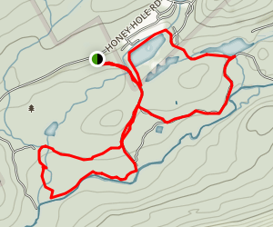 Nescopeck Ponds Loop Trail Map