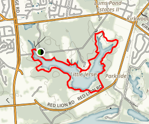 Swamp Forest Trail Map