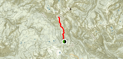 Beehive Basin Trail No. 40 Map