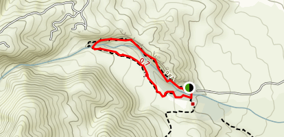 Andreas Canyon Map