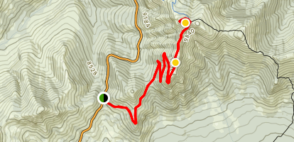 Dunraven Pass to Mt. Washburn Trail Map