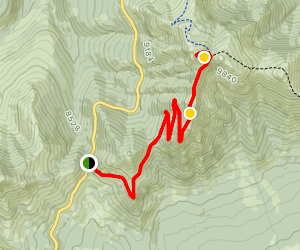 Dunraven Pass to Mount Washburn [CLOSED] Map