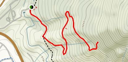 Tenderfoot Mountain (CLOSED) Map