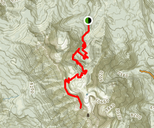 Mt. Timpanogos - Timpooneke Trail Map