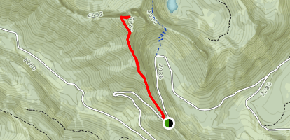High Rock Lookout Trail Map