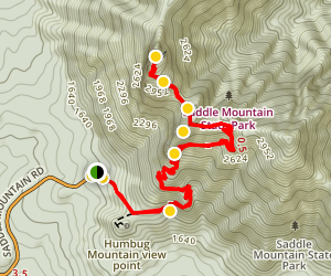 Saddle Mountain Trail Map