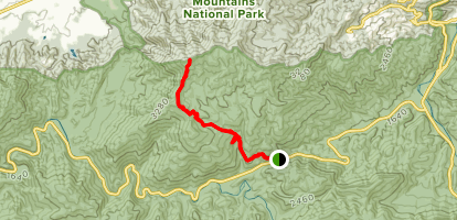 Laurel Falls and Cove Mountain Map