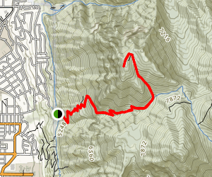 "The ""Y"" Mountain Trail Map"