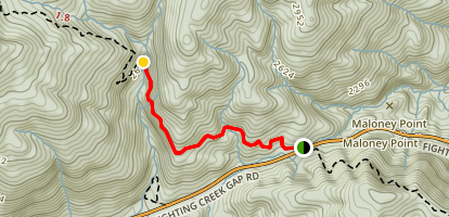 Laurel Falls Trail Map