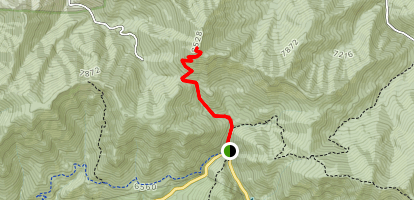 Mount Aire Trail Map