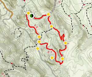 South Rim and Willow Creek Loop Trail Map