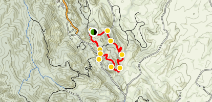South Rim Loop Trail Map