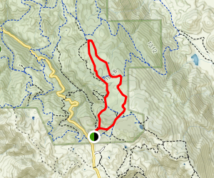 Bob Walker Ridge Trail Map