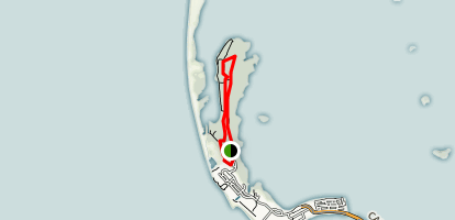 Honeymoon Island Trails Map