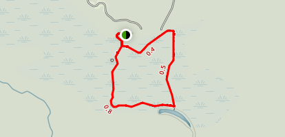 Congaree Swamp Loop Map
