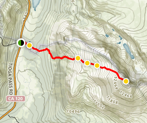 Mount Dana Summit Trail Map