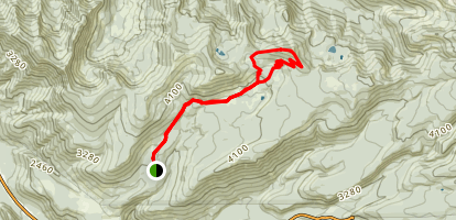 Burnt Lake South Trail to East Zigzag Mountain Trail Map