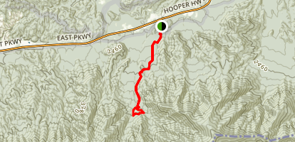 Maddron Bald Trail to Albright Grove Loop Map