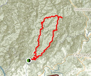 Newton Bald Loop Trail Map